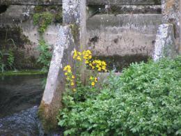 Beussent_62170_la_Course_-chute_du_moulin_la_place_-4_juillet_2012-260.JPG